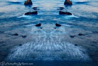 Water Whale Tale