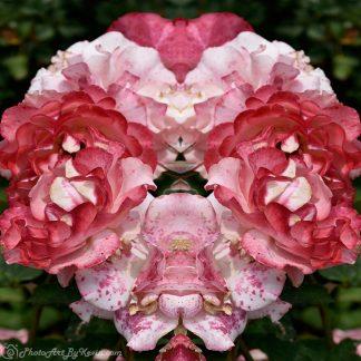 Bounty of Petals