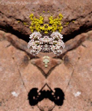 Levitating Flower