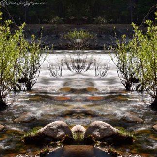 Dizzy River