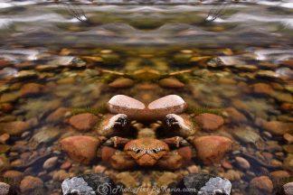 River Sphinx