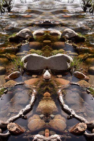 Agua Stupor