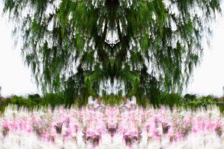 Staccato Tree