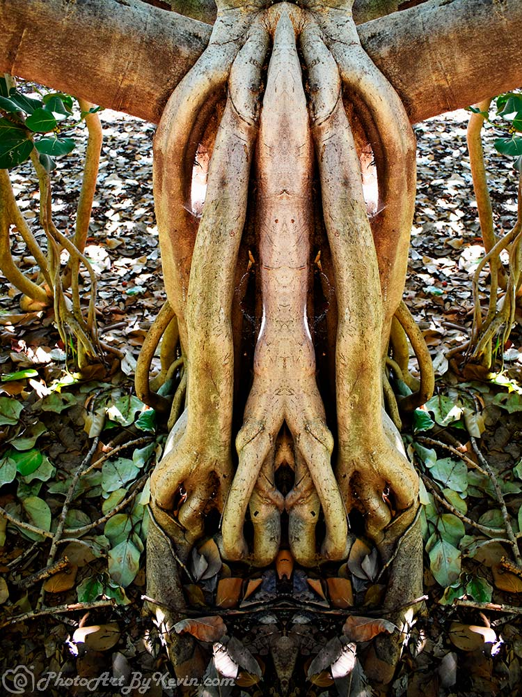 The Claw Tree