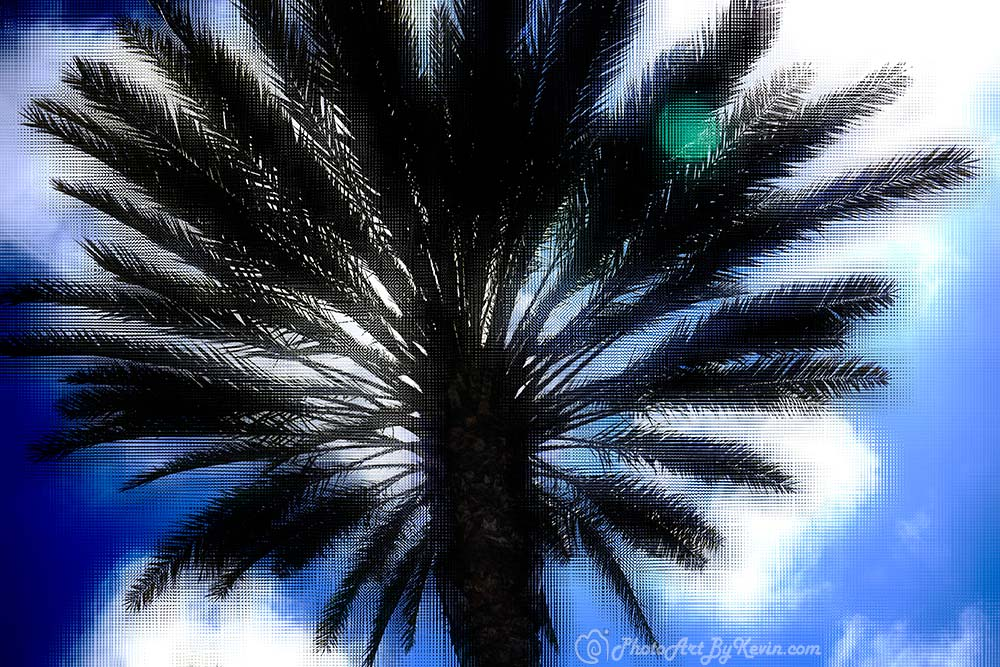 Palm Q. Linen Tree