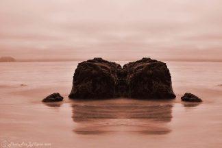 Parallel Universe Ocean